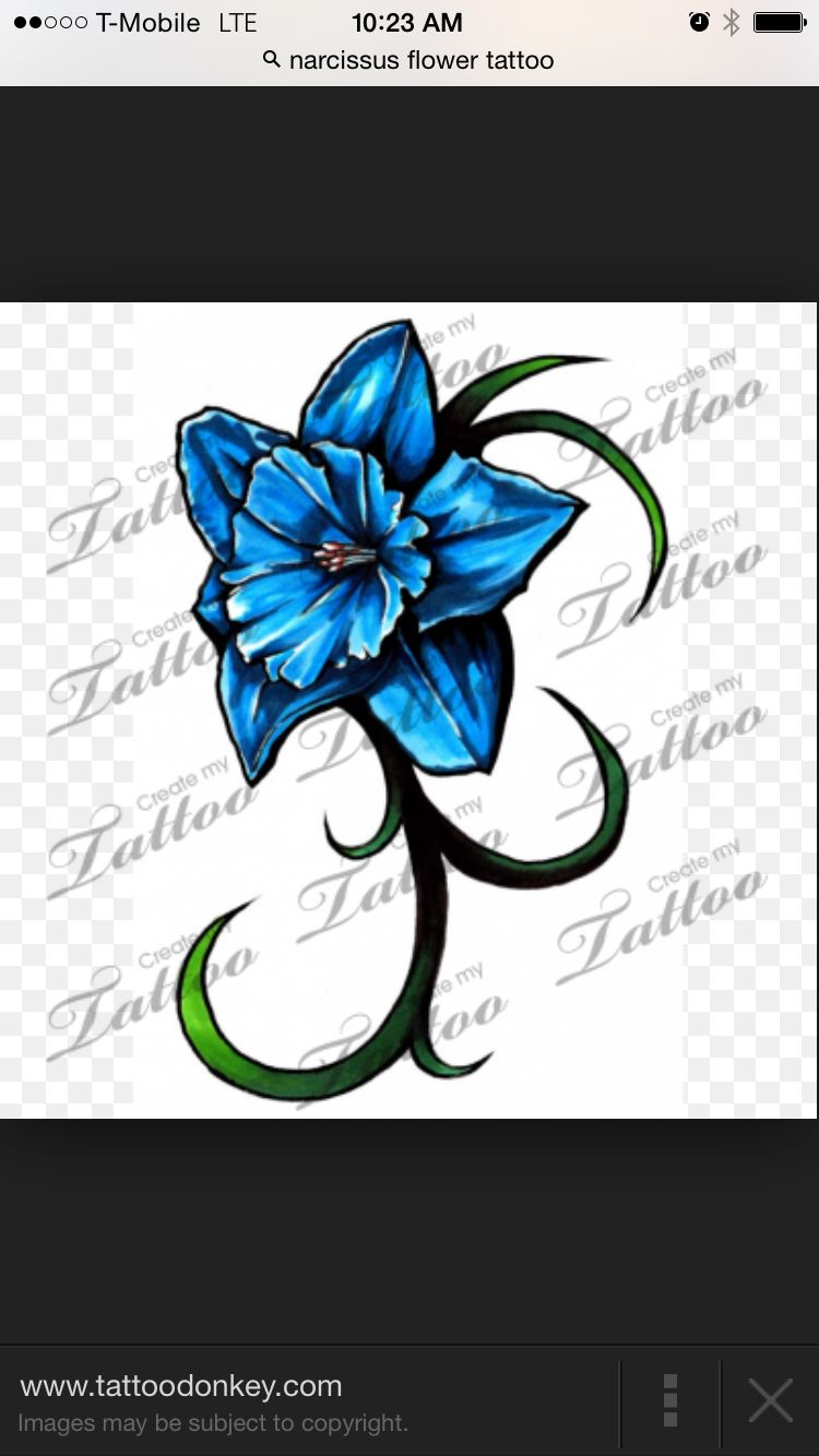 Narcissus Tattoo Daffodil Tattoo Narcissus Flower Tattoos Narcissus Tattoo