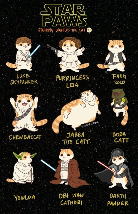 Star Paws - Nerdy Home Artwork Fat Cat Funny Puns