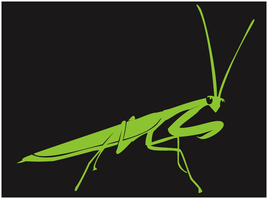 Pin By Ford Davis On Stencil Templates Praying Mantis Stencil Templates Stencil Template
