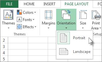 Print A Worksheet In Landscape Or Portrait Orientation Print Microsoft Excel Excel