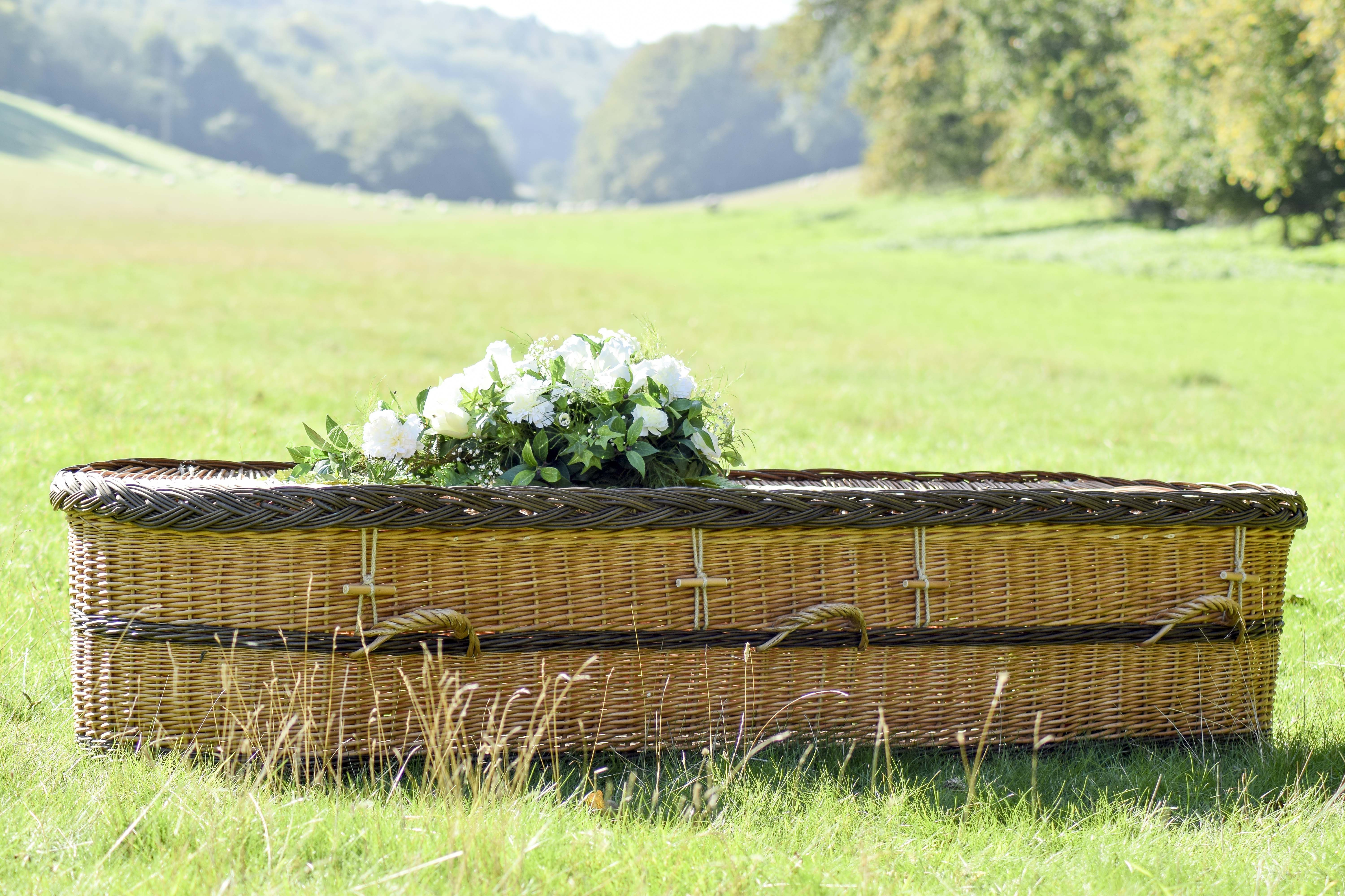 English willow coffin in 2020 environmentally friendly