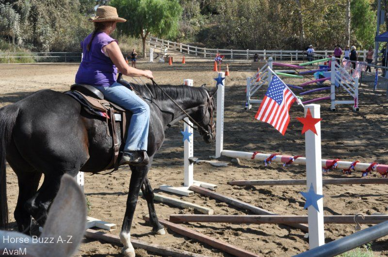 horse obstacle course plans