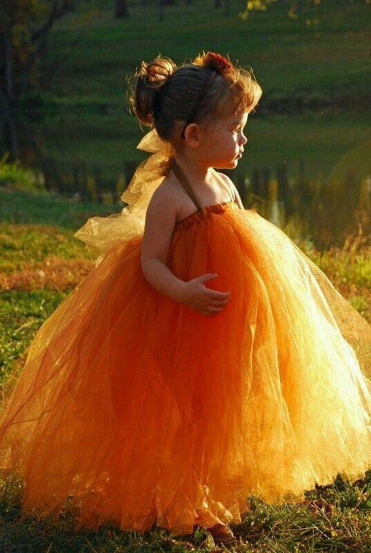Lovely Tutu Dress