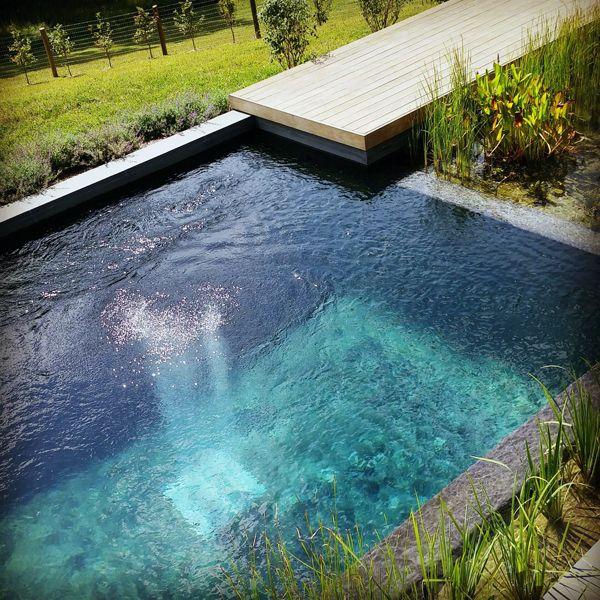 BIOTOP NATURAL POOLS Natural pool, Natural swimming
