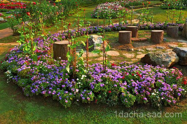 фото красивых дач 13   Садовые идеи, Растения, Садоводство