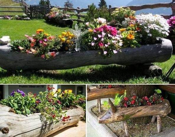 Maceteras elaboradas con troncos de diferentes formas for Ideas para jardines exteriores