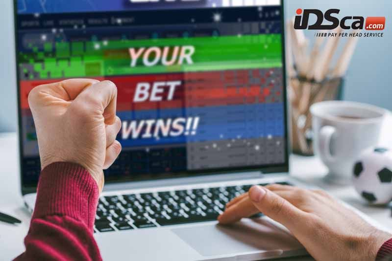 Sportsbook Criteria Bookmakers and Punters Want in a Online Betting Platform | Sportsbook, Betting, Online
