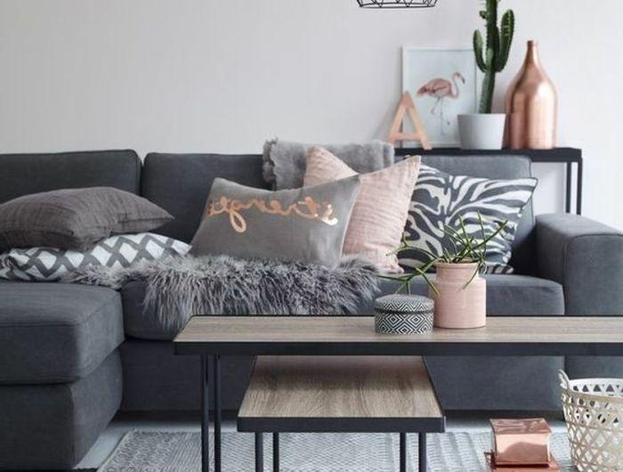 1001 ides dco originales pour le salon rose et gris