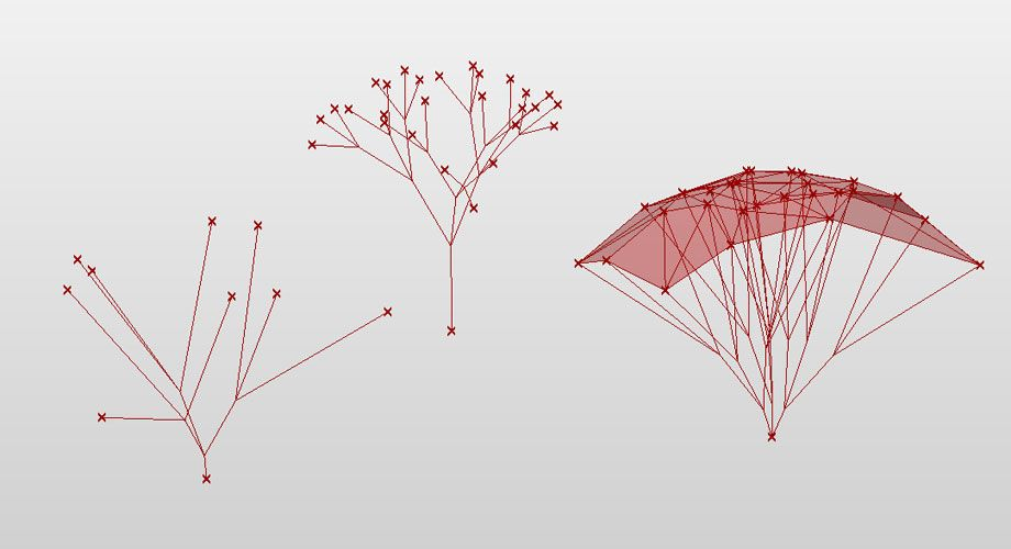 3d Branching Structures
