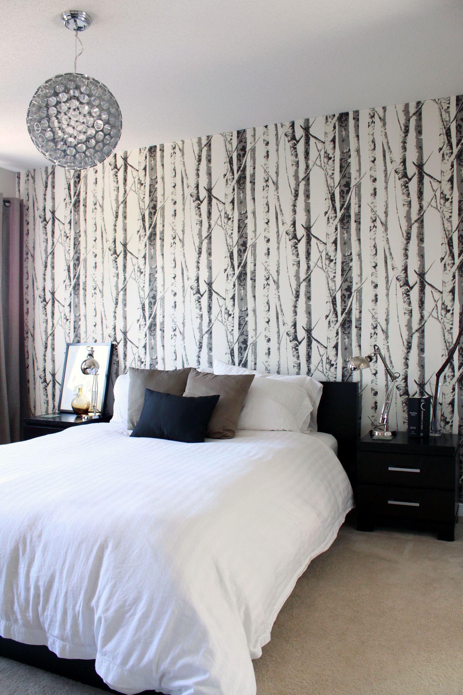Birch tree wallpaper  Contemporary bedroom, Stylish bedroom