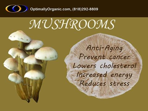 With many essential #nutrients, Mushrooms are the healthiest food in the world. #healthyfood #healthyliving