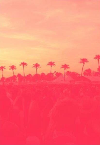 Iphone wallpaper sunset summer pink orange pal trees ...