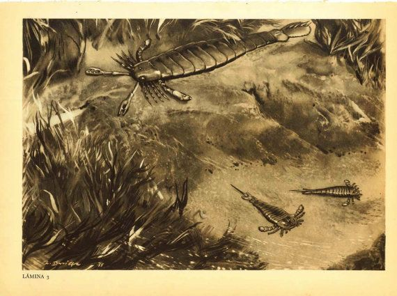 Extinct Prehistoric Animal Vintage Print by CarambasVintage, $16.00