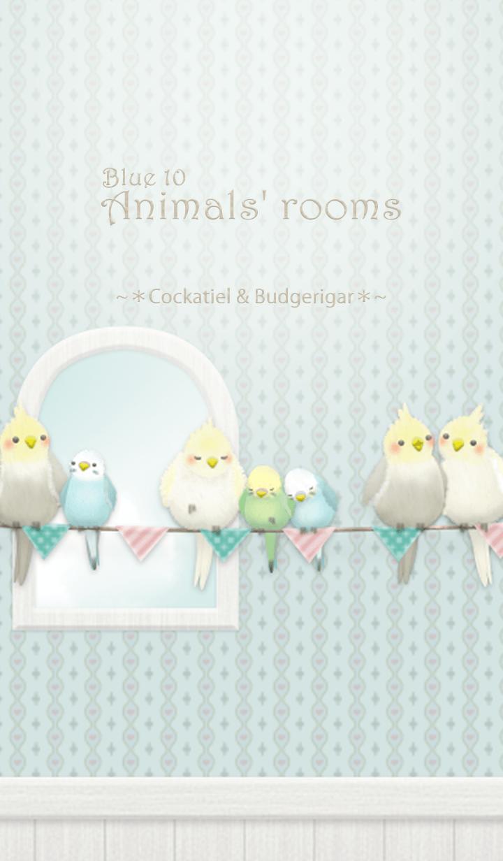 Animals Rooms Cockatiel Budgie Blue 10 鳥 イラスト かわいい