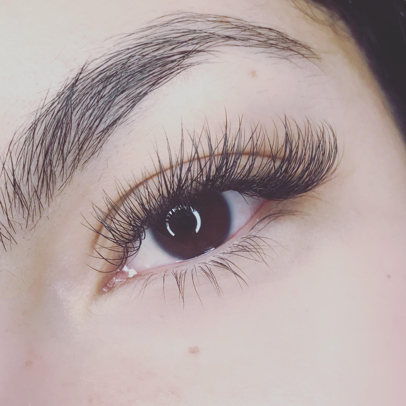 - Hybrid Full Set$100 Lash extension services in classic ...