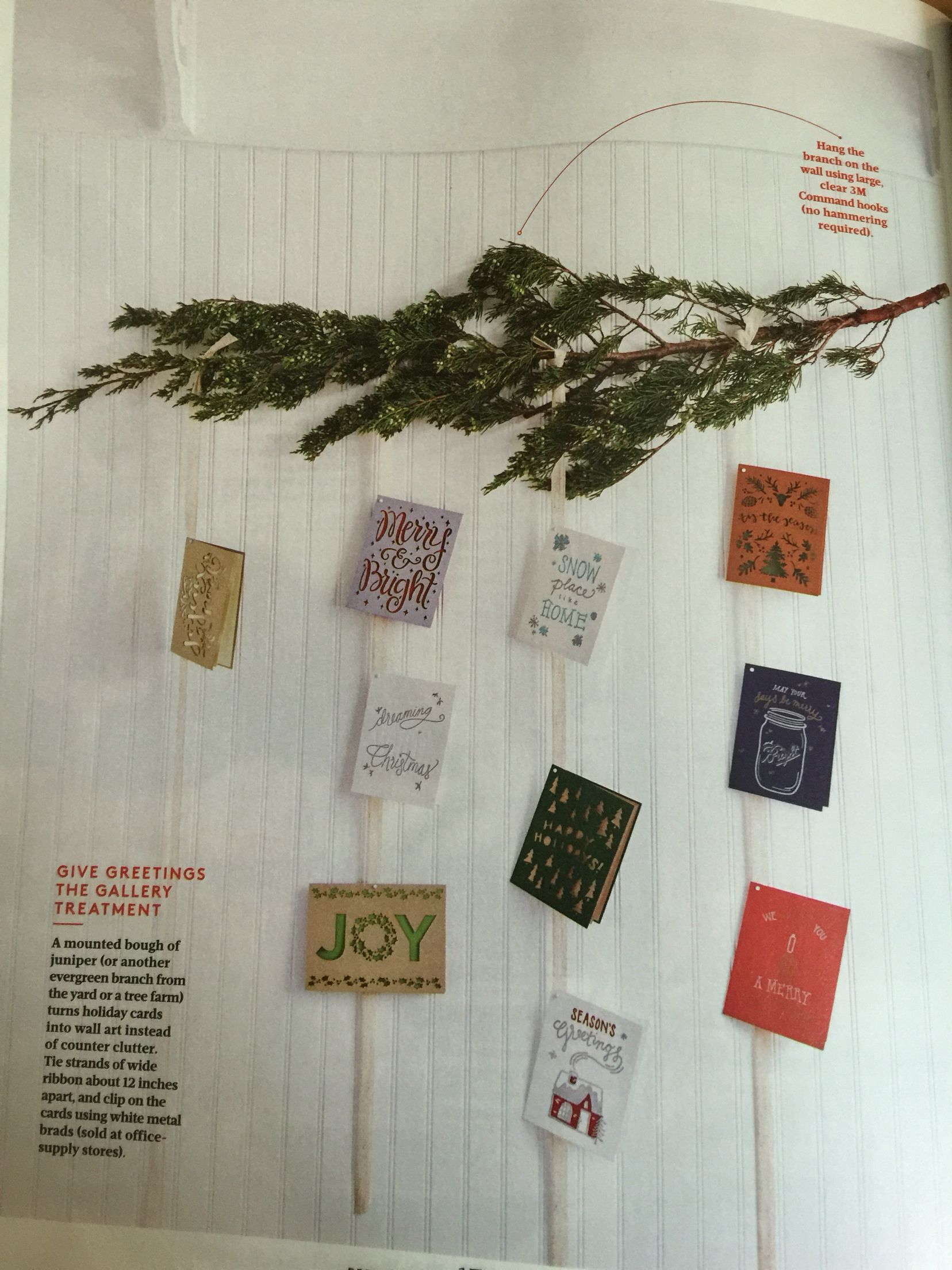 Mounted juniper bough holiday card display christmas pinterest