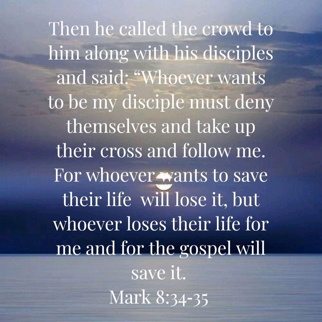 Pin by Maggie Mcmasters on Gospels Matthew, Mark,Luke,John | God