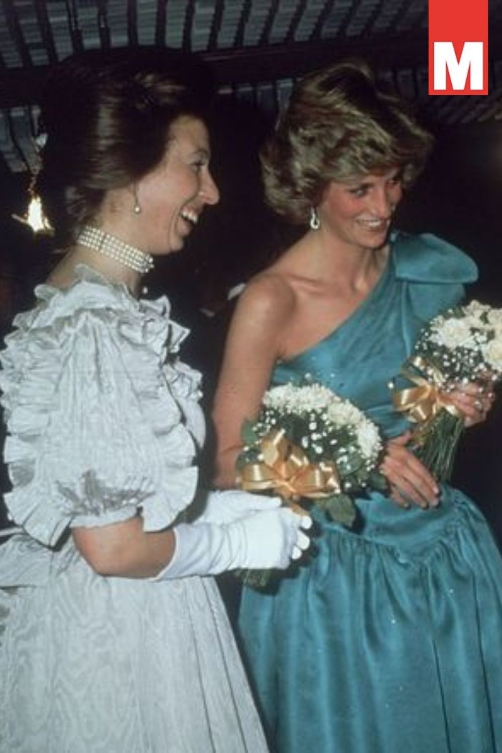 Princess Diana had 'set to' with Princess Anne after she