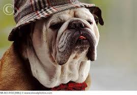 AHHH..  that hat!!