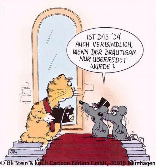 Cartoon Wedding Uli Stein Pinterest Lustig Witzig Und