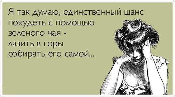Smeshnoe Pro Pohudenie Pri Pomoshi Zelenogo Chaya Russian Humor Humor Quotes