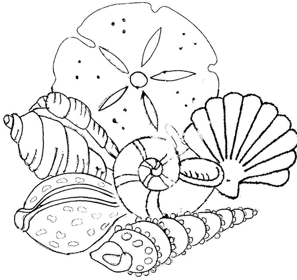seashells - embroidery pattern | stencils | Pinterest | Bordado ...