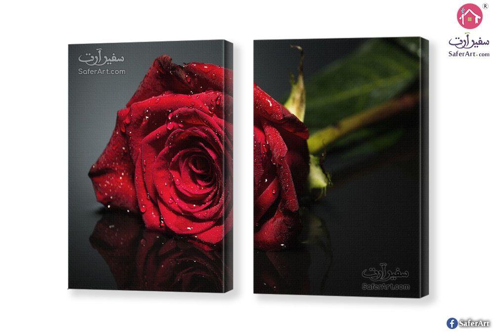 تابلوه مودرن ورده حمراء سفير ارت للديكور Red Flowers Flower Painting Painting