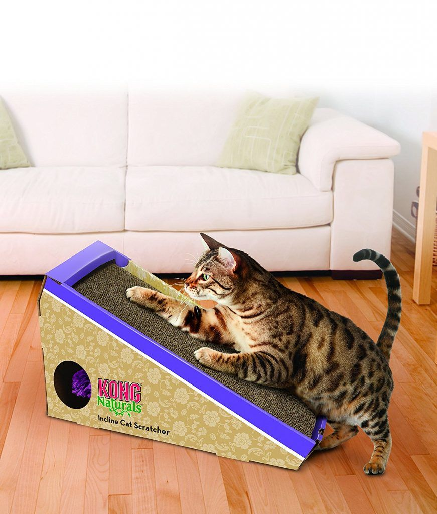 Guide To Cat Toys For Indoor Cats By The Happy Cat Site Cat Toys Cat Scratcher Cat Pet Supplies