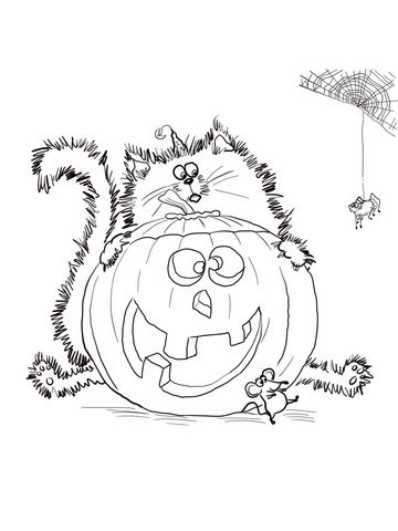 splat the cat halloween coloring pages | Scaredy Cat Splat coloring ...