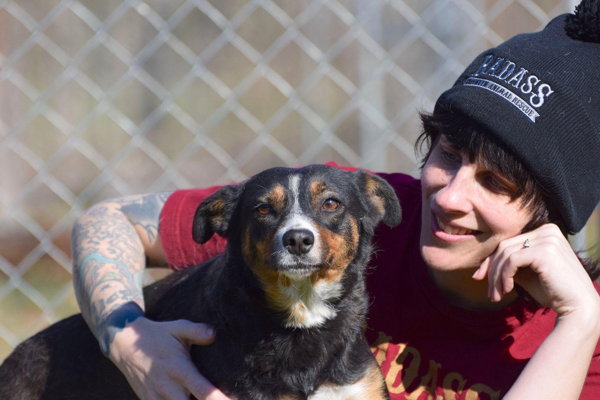 Adopt Marta Cabrera On In 2020 Adoptable Beagle Homeless Pets Help Homeless Pets