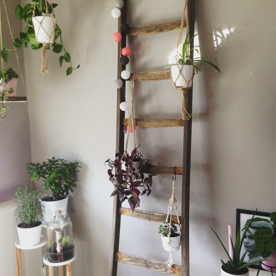 Oude Ladder Tot Decoratie Ladder Met Planten In De Woonkamer Oude Ladder Decoratie Slaapkamerdecoratieideeen