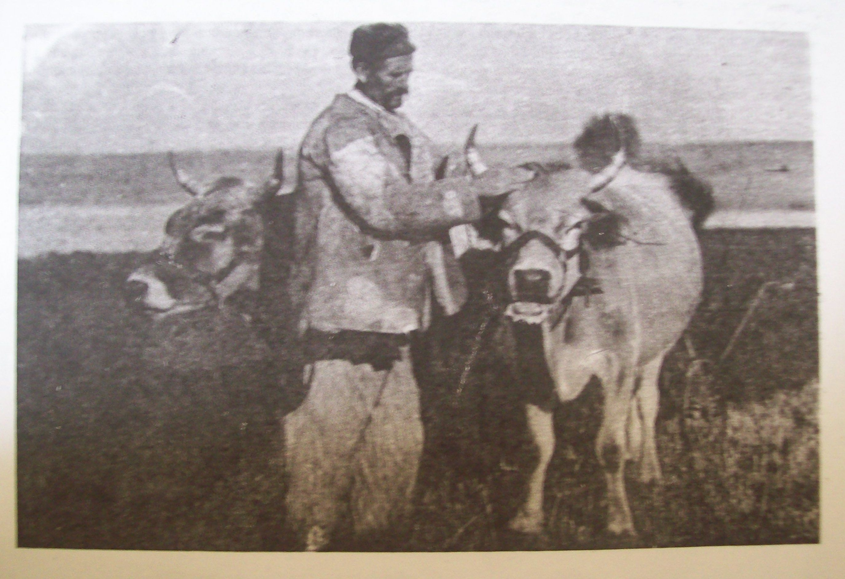 Mzhka Nosiya S Nogavici Folk Art Moose Art Art