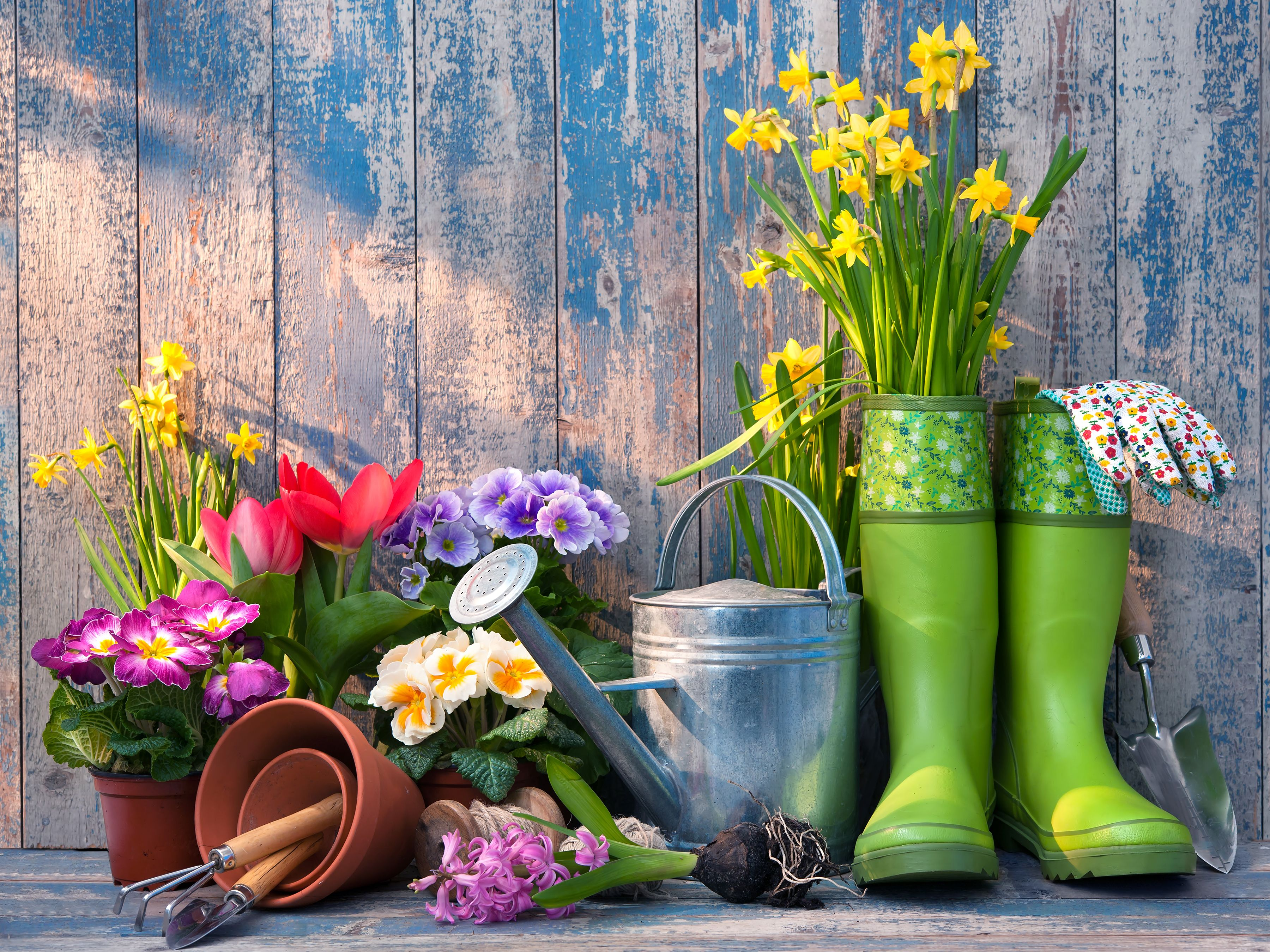 Gardening is fun rewarding and accents a greatlooking lawn Save