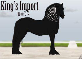 #33 Faime King's Import