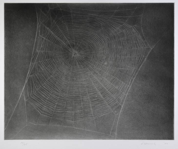 Vija Celmins, Untitled (Web 4), Photo-etching and drypoint on paper, 2002. Via Tate/National Galleries of Scotland.