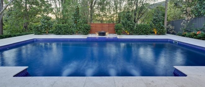 Pest Control Tips For Your Pool This Summer