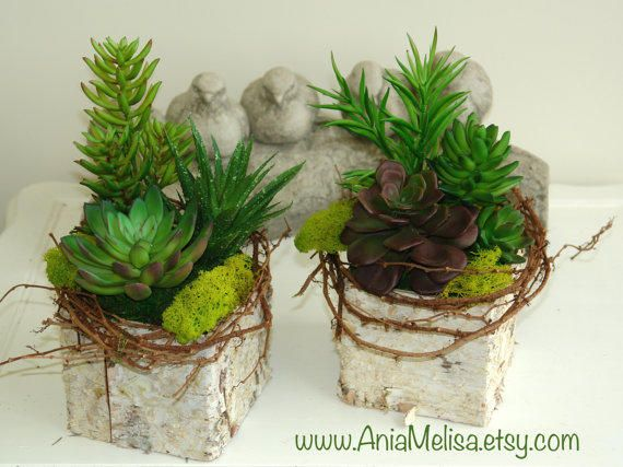 Best Table Flower Centerpieces Products On Wanelo Crassula