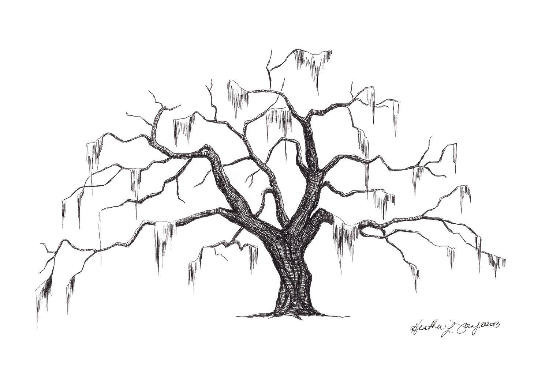 Pin By Bianca Rosales On Tree Tattoos Oak Tree Drawings Live Oak Tree Tattoo Oak Tree Tattoo
