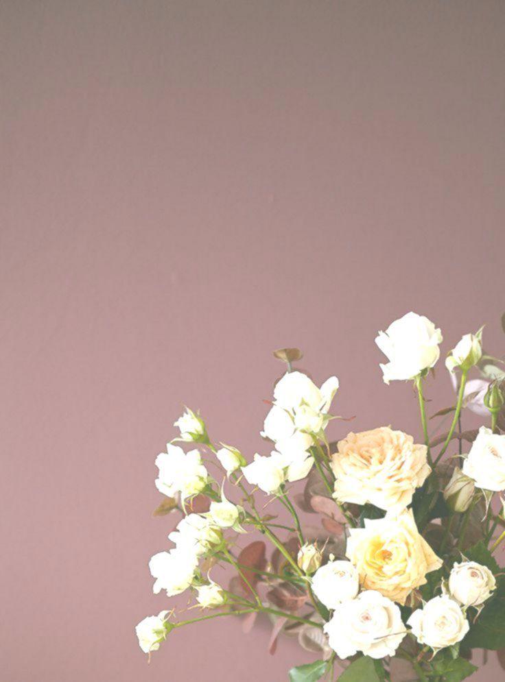 Alpina: Alpina Feine Farben No. 17 FARBE DER KÖNIGE - Herrschaftlichea Purpur - Chris Gotham -  #Alpina #chris #Der #Farbe #Farben #feine #Gotham #Herrschaftlichea #KÖNIGE #Purpur #alpinafeinefarben Alpina: Alpina Feine Farben No. 17 FARBE DER KÖNIGE - Herrschaftlichea Purpur - Chris Gotham -  #Alpina #chris #Der #Farbe #Farben #feine #Gotham #Herrschaftlichea #KÖNIGE #Purpur #alpinafeinefarben
