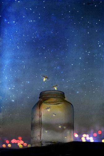 Justbesplendid Firefly Catching Fireflies Stardust