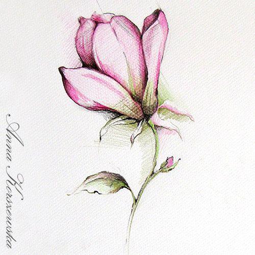 Pin De Mara Saulite Em Products I Love Aquarela Floral Tatoo Flor De Magnolia