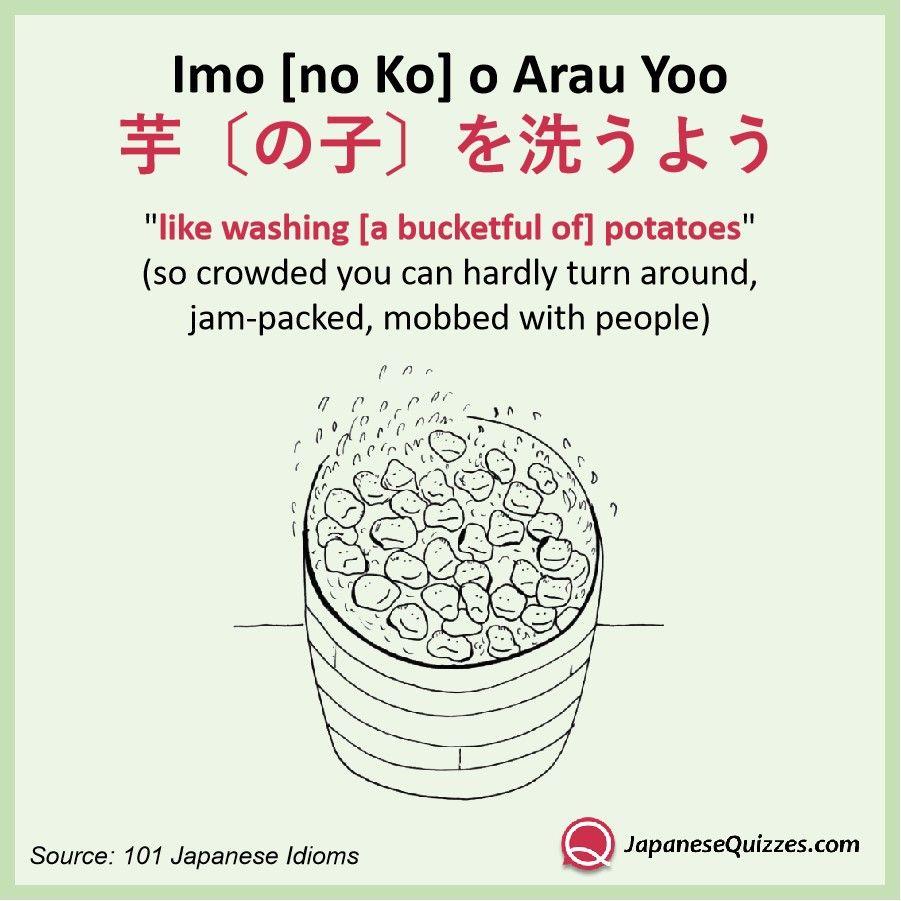 imo no ko o arau yoo japanese language learning learn japanese japanese phrases