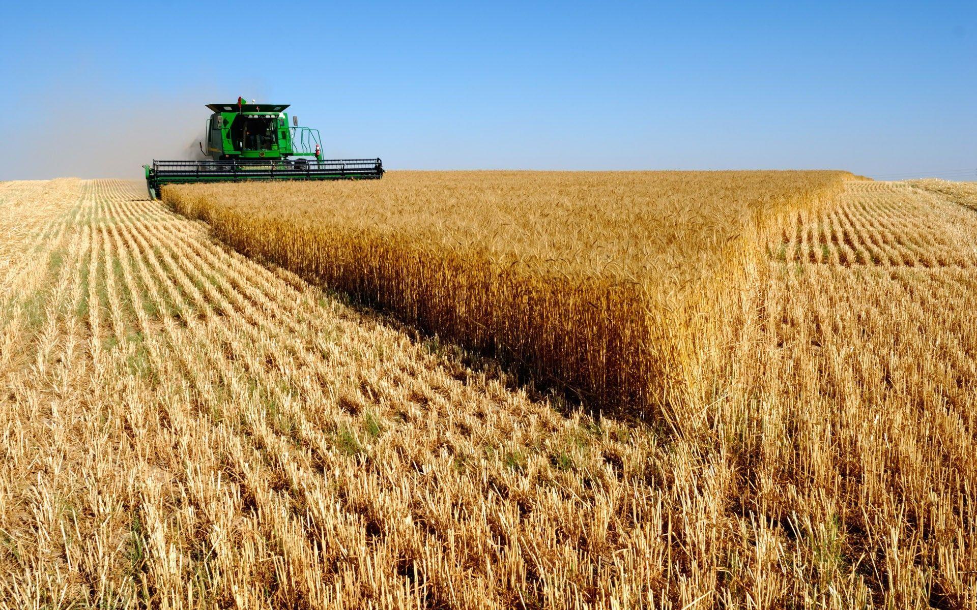 Wheat vehicles bine harvester farming john deere wallpaper