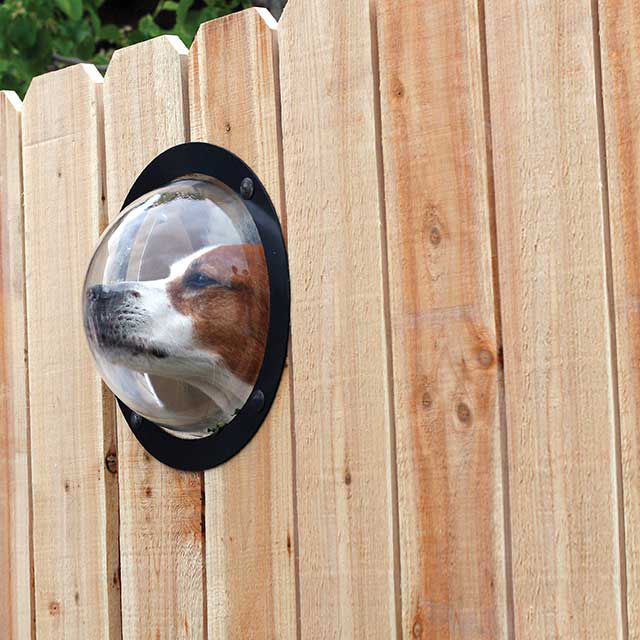 Pet Dome Window for fences