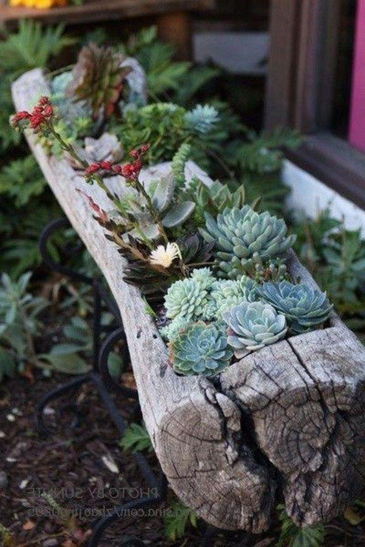 27+ Schöne faszinierende Garten Sukkulenten Garten Ideen #Hinterhof #Su, #beautifulplants #f...