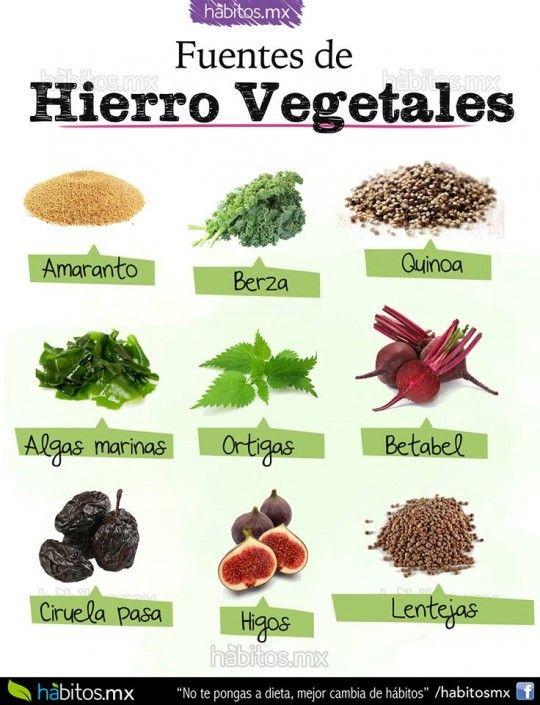 Fuentes De Hierro Vegetales Beneficios De Alimentos