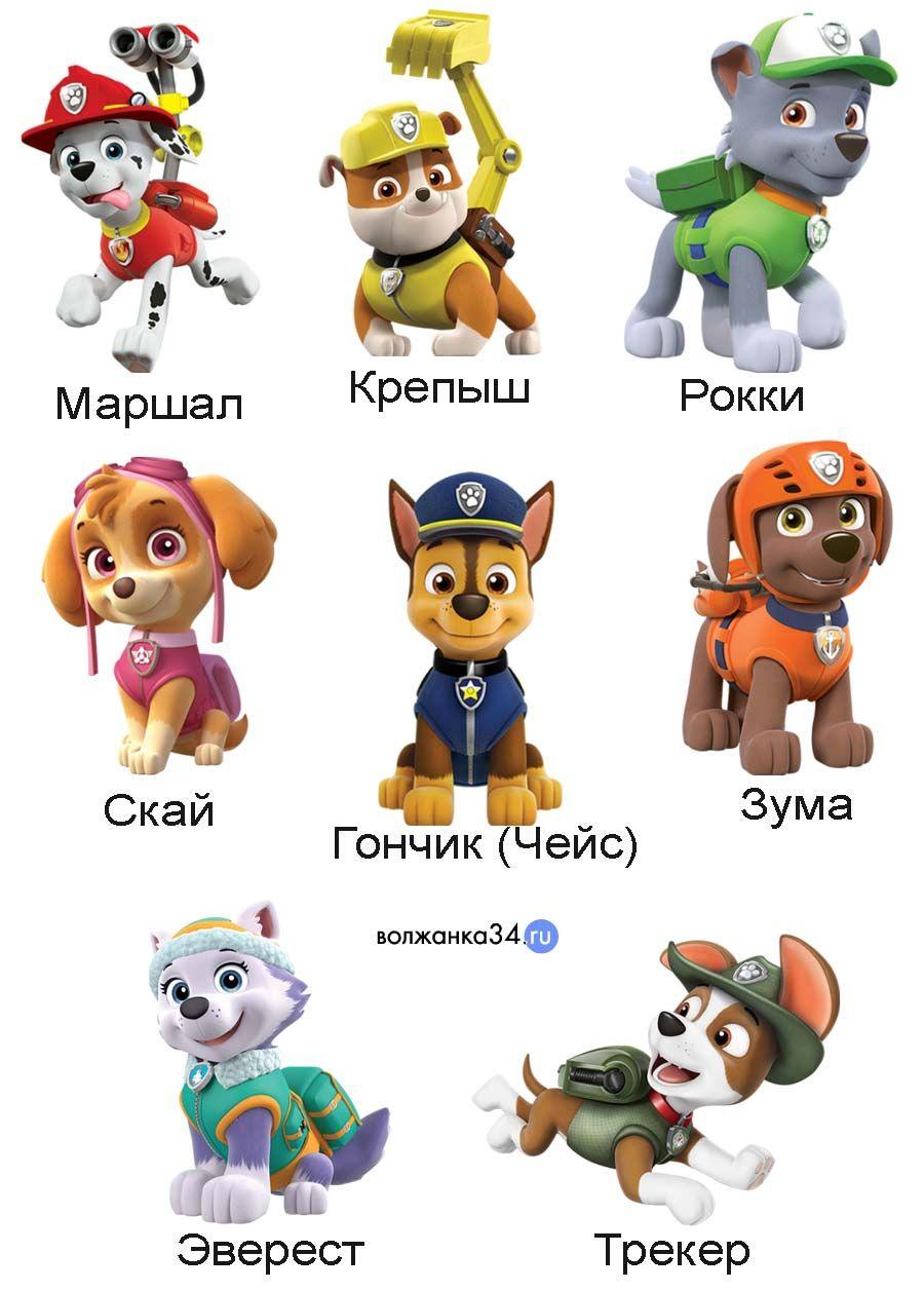 Герои мультфильма «Щенячьего патруля» с именами (21 фото ...