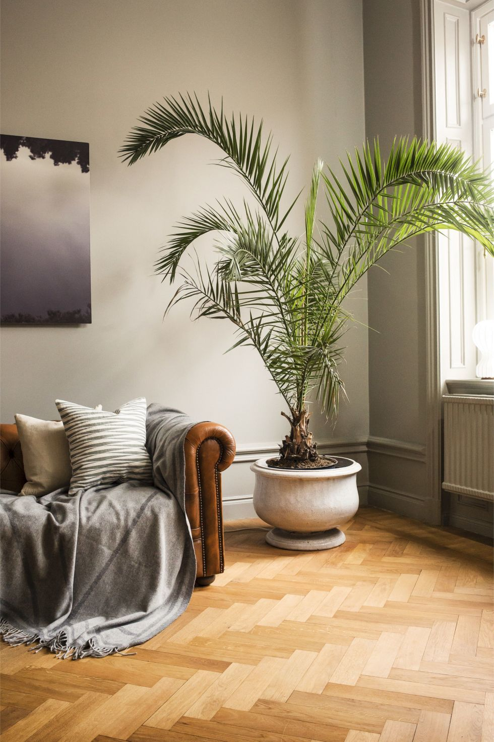 How To Include Taxidermy Into Trendy Home Decor: How To Bring Lagom Into Your Home: 16 Tips From Designers And Stylists