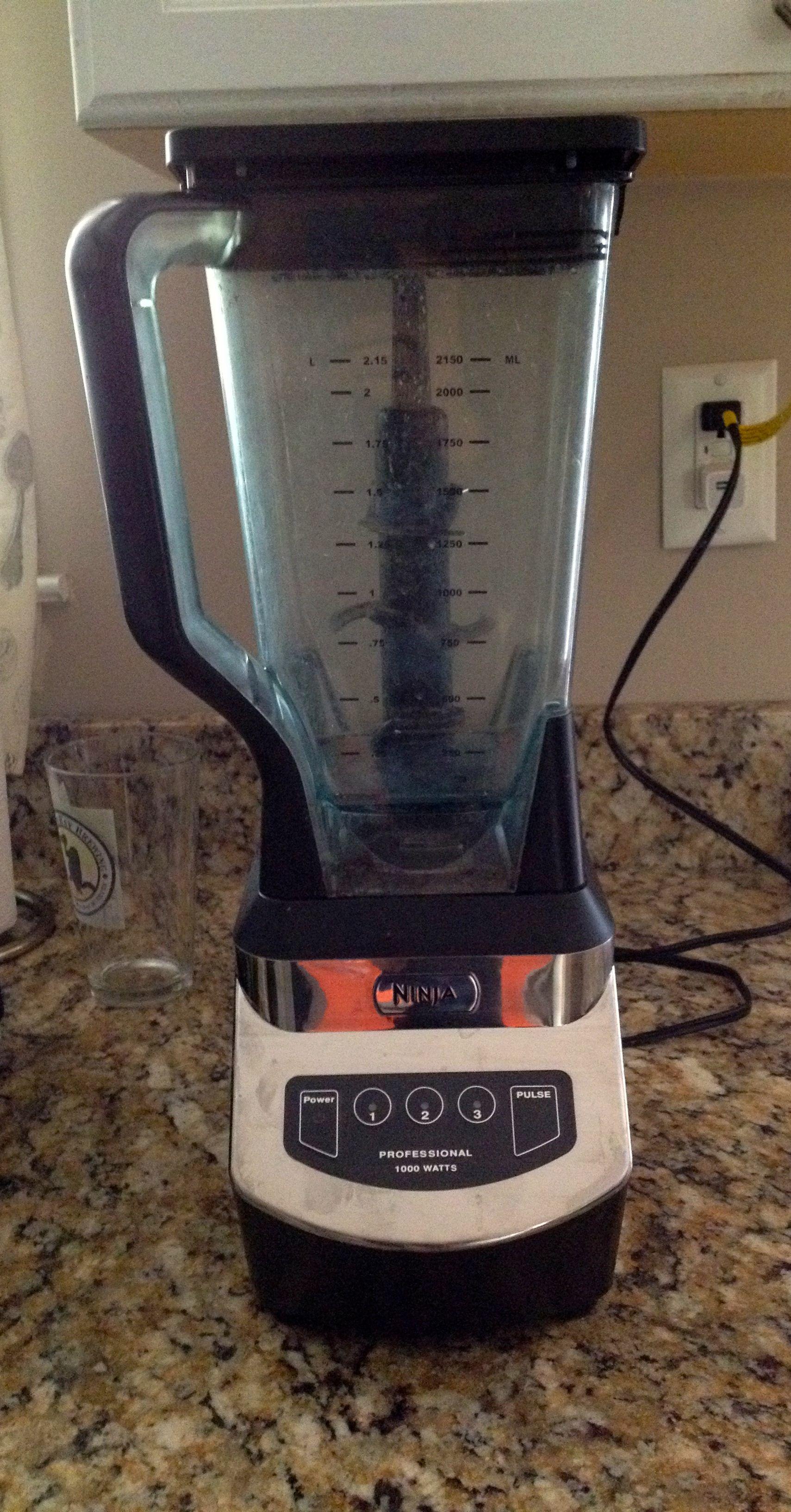 ninja professional blender 1000 recipes