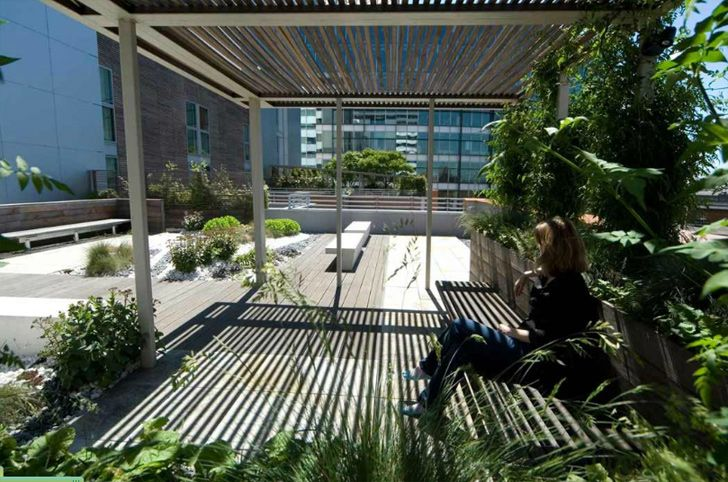 Garden Walk London: Paddington Walk Gardens: 3 Rooftop Sanctuaries That Travel The World Without Leaving London